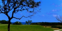 Five Caribbean Golf Must Plays