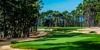 Poppy Hills Golf Course Review