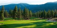 Reno Golf Guide
