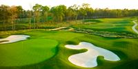 Super Bowl Site Houston Holds Super-Sized Green Grass Public Winter Golf