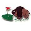 Buffalo Grove Golf Course