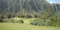 Oahu Golf - Ko'olau Golf Course