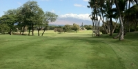 Maui My Way