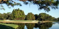 Innisbrook's Famed Copperhead Course is Back in Action