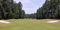 Foxfire Golf & Resort - Grey Fox Review