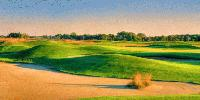 The Loop - Twin Cities Golf Courses are Considering Shorter Options