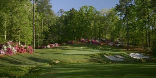 Dancing Rabbit Golf Club - Azaleas