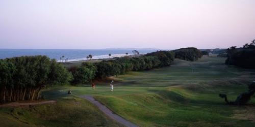 Jekyll Island Golf Club - Oleander