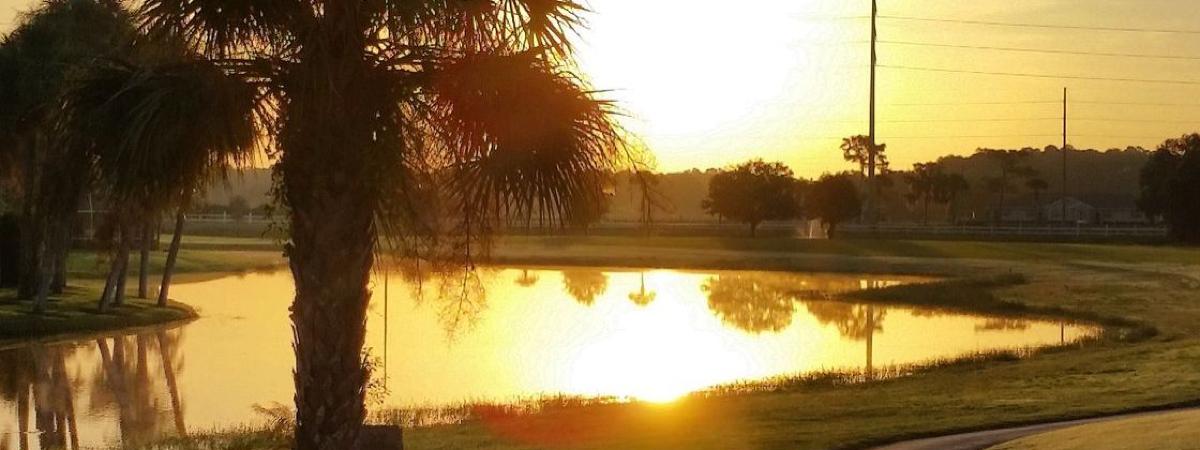 Country Club of Sebring