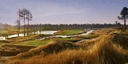 Golf Destination: Brunswick Golf Trail