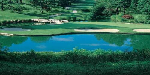 Virginia Golf